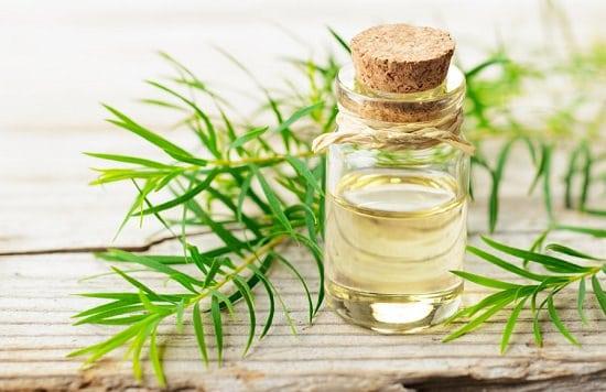 Tea Tree Essential Oil For Skin Lightening