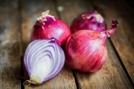 Do Onions Kill Rats 2