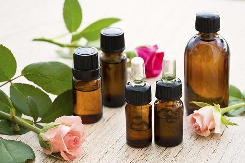 Débarrassez-vous des perce-oreilles avec des huiles essentielles ⋆ Bright Stuffs