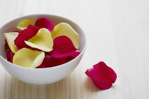 Rose Petals and Olive Oil for Stretch Marks2