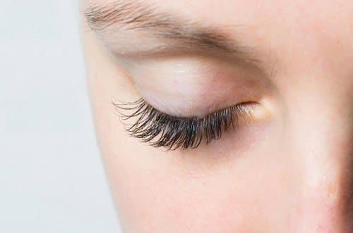 Does Shea Butter Help Grow Eyelashes2
